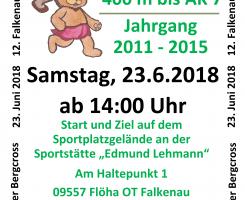 Bergcrosslauf am 23.06.2018